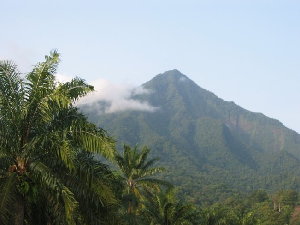 Mont Cameroun picture